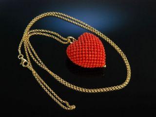 Coral Heart Pendant Herz AnhÄnger Mit Kette Sardegna Koralle Silber Vergoldet Bild