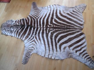 Echtes Chapman - Zebrafell - Exotisches Schmuckstück - Wohnkultur 200x250cm Bild
