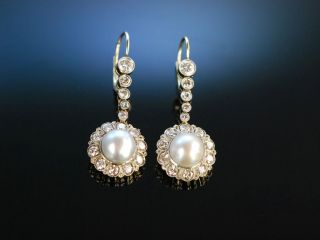 Antike Ohrringe Gold Platin Orient Perle Diamanten Um 1900 Natural Pearl Earring Bild