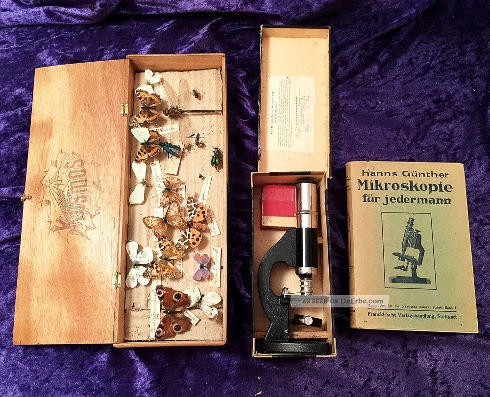 20er/30er J.  Antikes Forscher Ensemble / Mikroskop / Handbuch 1923 / Präparatebox Optiker Bild