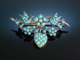 Historische Brosche TÜrkise Saat Perlen DoublÉ Um 1850 Antique Turquoise Brooch Bild