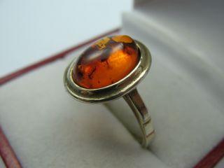 Gdansk Polen Sehr Schöner Bernstein Ring Aus Vergoldetem 925 Sterling Silber Bild