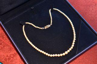 Schöne Echte Perlenkette Mit Verschluss Weißgold 750 Bild