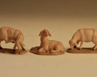 Krippenfiguren - Schafe - äsend,  Liegend Und Kratzend Bild