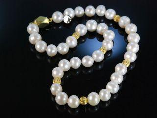 Feine Grosse Zucht Perlen Kette Collier Silber 925 Vergoldet Pearl Necklace Bild