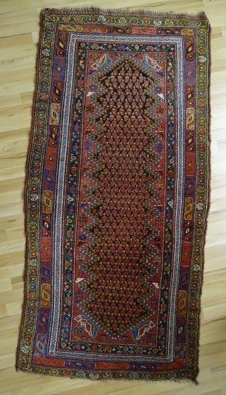 Nord West Persischer Orient Teppich Geknüpft 1900 Bis 1925 100x200 Bild