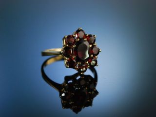 Classy Vintage Garnet Granat Ring Gold 333 MÜnchen Um 1950 Trachten Schmuck Bild
