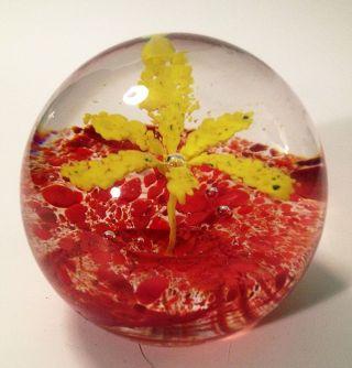 Paperweight Presse Papiers Briefbeschwerer Glas Mehrfarbige Pflanzenwelt Bild