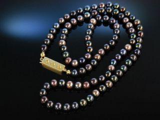 Black Akoya Pearl Necklace Lange Akoya Zucht Perlen Kette Natur Schwarz Gold 750 Bild
