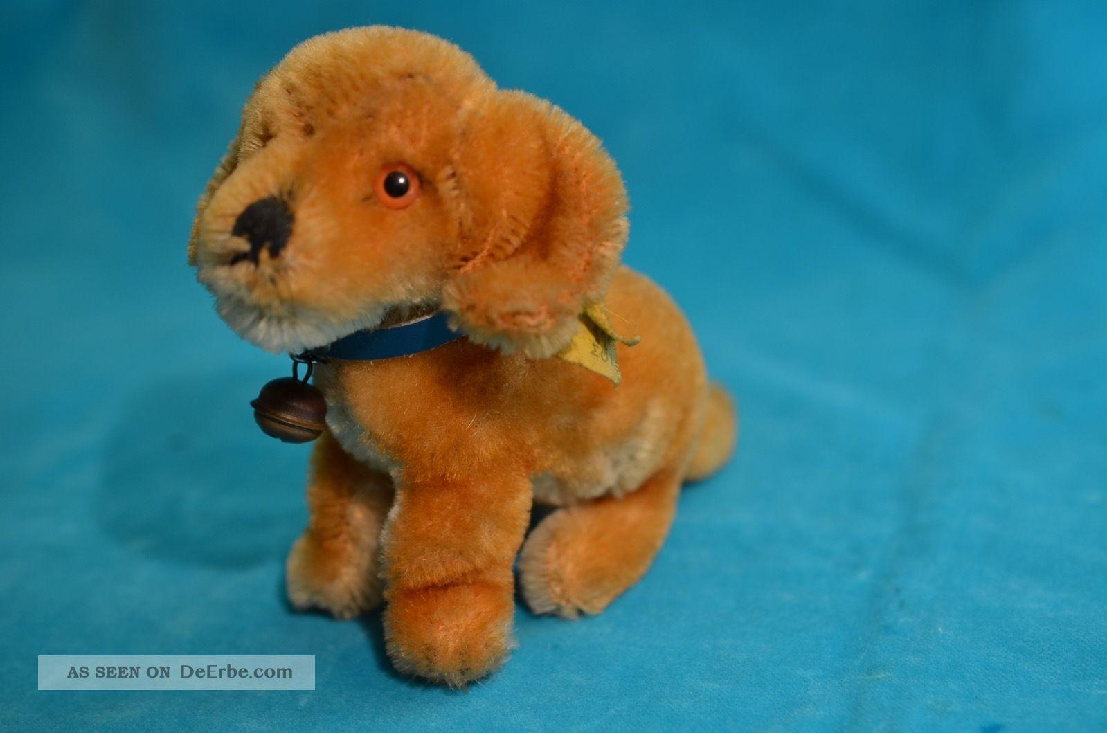 Steiff Hund Mit Knopf Und Fahne Tiere Bild