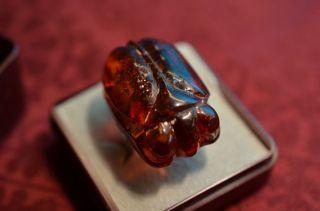 Schöner Alter Antiker Ausgefallener Bernsteinring Käfferfigur Silber 800 Um 1900 Bild