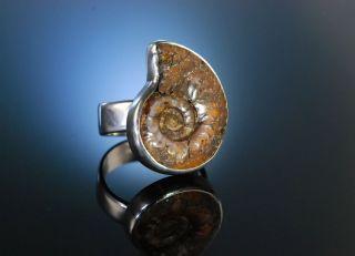 Seventies Grosser Vintage Ring Sterling Silber 925 Ammonit Fossil Versteinerung Bild
