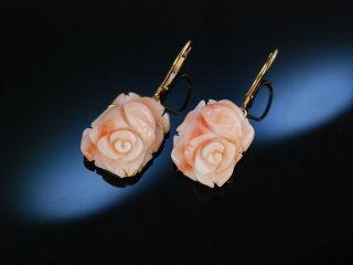 Feine Ohrringe OhrhÄnger Engelshaut Koralle Rosen BlÜten Gold 585 Coral Earrings Bild