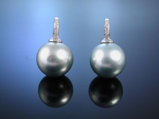 Tahiti Grey Zucht Perlen OhrhÄnger Brillianten Gold 750 Ohrringe Pearl Earrings Bild