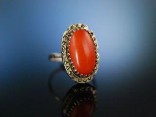 Italien Um 1920 Coral Ring Grosser Mittelmeer Korallen Ring Silber Markasiten Bild
