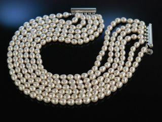 Edle Zucht Perlen Kette 6reihig Silber Pearl Choker Necklace Collier De Chien Bild