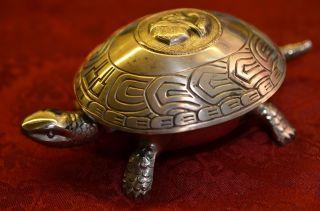 Ausgefallener Boj Eibar Spanien Dienerruf Klingelknopf Hotelglocke Schildkröte Bild
