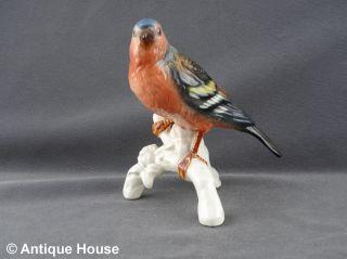 Hutschenreuther ältere Porzellanfigur Vogel Made In Western Germany Modell 95 Bild