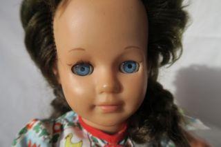Schildkröt Puppe,  60er Jahre Bild