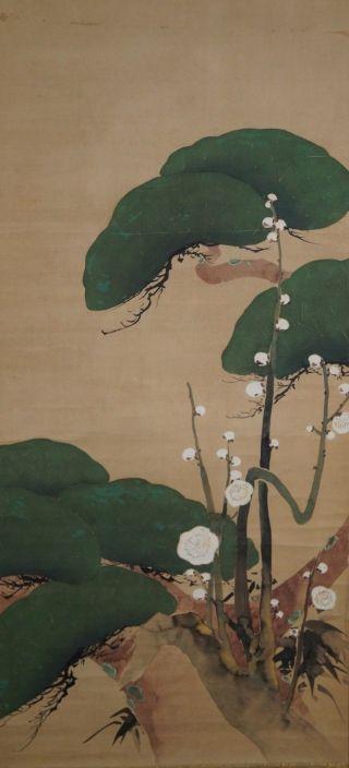 Antikes Japanisches Rollbild Kakejiku Blumen Japan Scroll 3517 Bild
