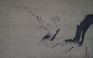 Antikes Japanisches Rollbild Kakejiku Pflaumenblüten Japan Scroll Ume Tree 3345 Bild