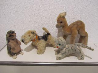 4 Stofftiere,  Hund Terrier,  Reh,  Katze,  Igel,  Alt,  Hersteller Unbekannt Bild