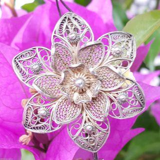 Brosche Blütenbrosche Filigran 800 Silber Jugendstil Um 1900 Punziert Ge Ø 3,  7cm Bild