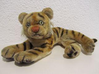 Steiff Tiger,  Jungtiger Liegend,  28 Cm,  50er/60er/70er Jahre,  Alt Bild
