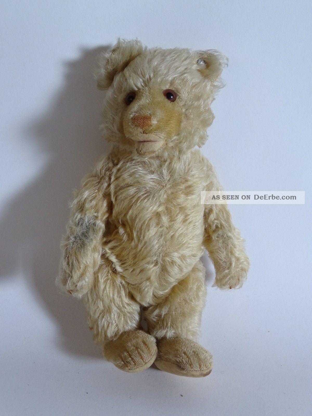 Antiker Vorkriegs Steiff Teddy Baby Langgezogenes F 5 - Fach Gegliedert Steiff Bild