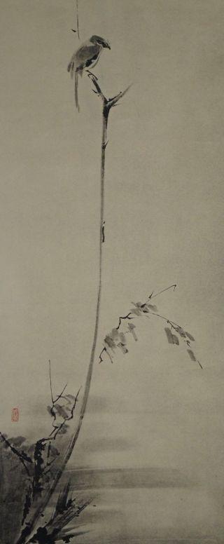 Japanisches Rollbild Kakejiku Musashi - Vogel Auf Einem Strauch Scroll 3504 Bild