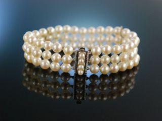 Klassische Perlen Edles Armband 3 Reihig Akoya Zuchtperlen Weiss Gold 585 Bild