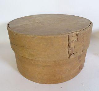 Antike Riesige Span Schachtel Aufbewahrungs Box Spanschachtel Um 1910 Bild