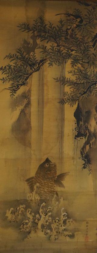 Antikes Japanisches Rollbild Kakejiku Koi Am Wasserfall Japan Scroll Carp 3307 Bild