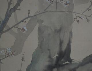 Antikes Japanisches Rollbild Kakejiku Vogel Am Baum Japan Scroll 3557 Bild