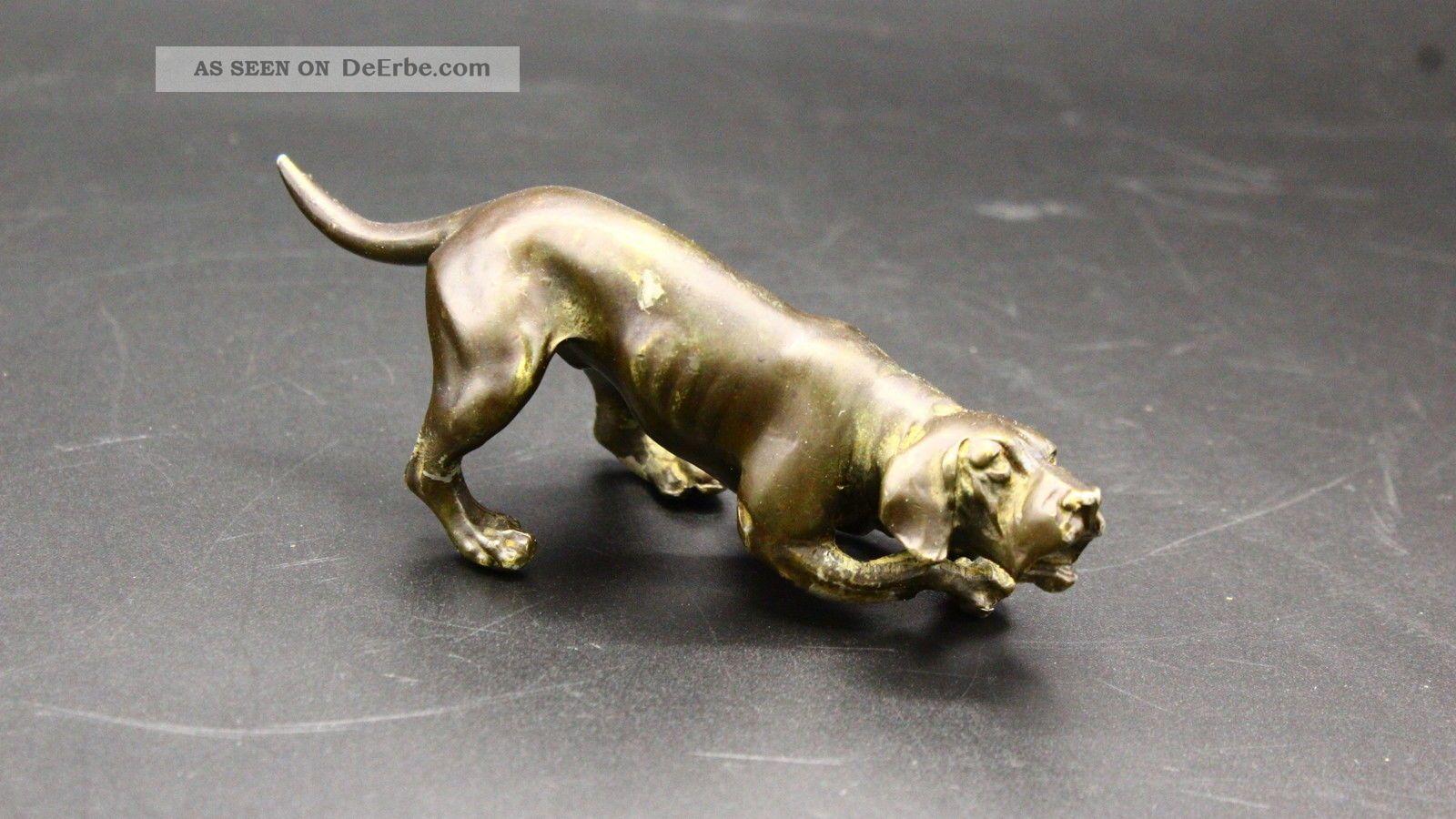 Bronze Skulptur Jagdhund Mit B Stempel 1930? Jagd Jäger Meraner Bronze Bild
