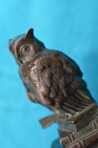 Schöne Alte Bronzefigur Eule Auf Sockel 20/30er Jahre Bild