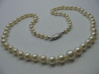 Klasse ältere Kurze Salzwasser Collier Perlenkette Mit Schließe Aus 925 Silber Bild
