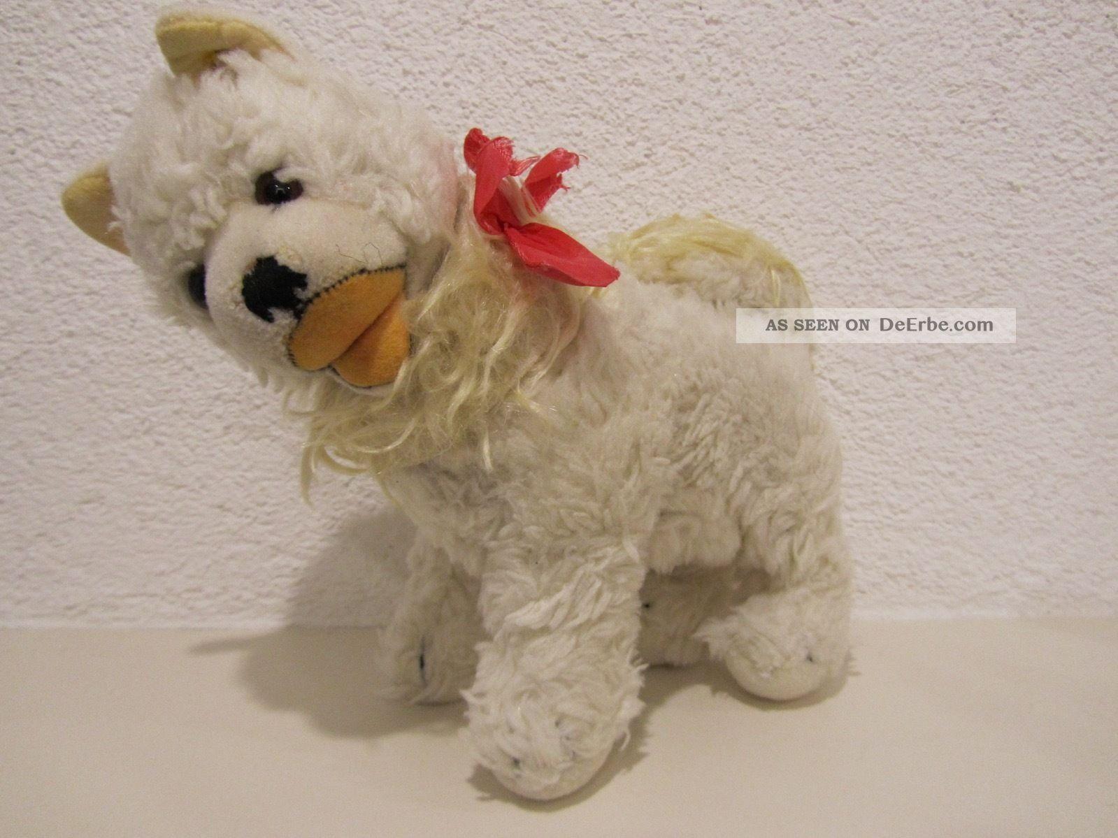 Steiff Hund Cosy Spitz Blanko,  60er/70er Jahre,  22 Cm,  Drehkopf Steiff Bild