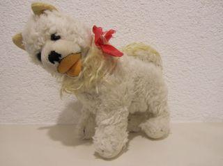 Steiff Hund Cosy Spitz Blanko,  60er/70er Jahre,  22 Cm,  Drehkopf Bild