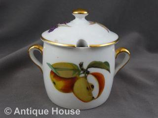 Royal Worchester Marmeladendose Zuckerdose Früchtedekor Obst Bild