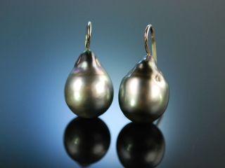 Black Pearls Ohrringe Schwarze Tahiti Zucht Perlen Tropfen Weiss Gold 585 Bild