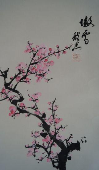 Antikes Japanisches Rollbild Kakejiku Sakura Kirschblüte Japan Scroll 3451 Bild