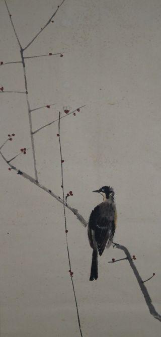 Antikes Japanisches Rollbild Kakejiku Vogel Am Baum Japan Scroll 3549 Bild