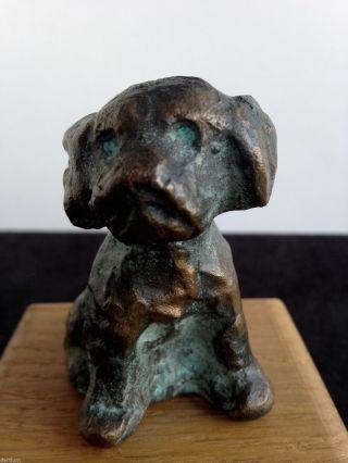 Friedrich Haufe 20.  Jhd.  - Bronze - Kleiner Hund Bild