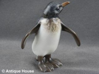 Rosenthal Porzellanfigur Pinguin Figur Modell 399 Handgemalt 01 Bild