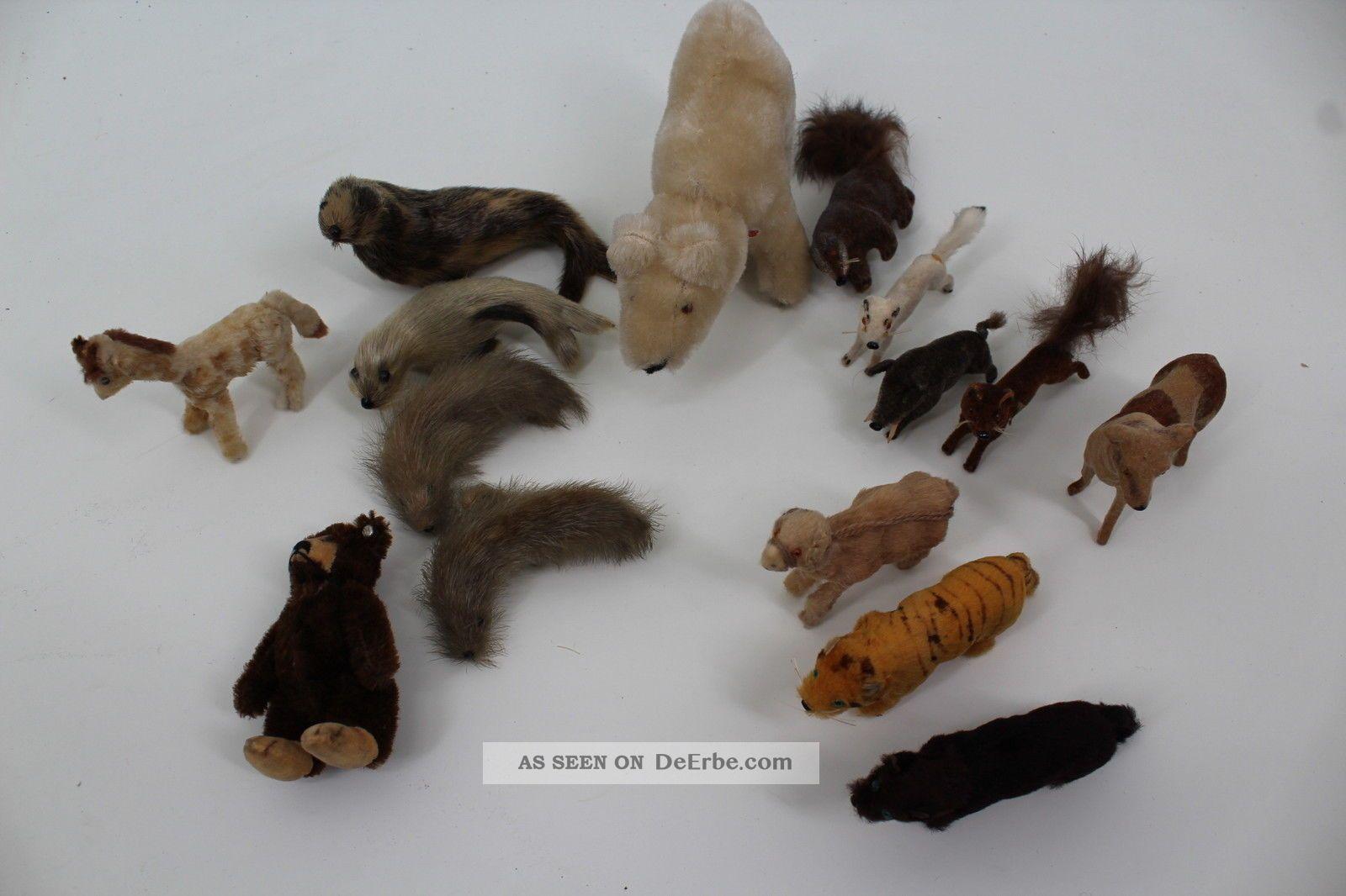 15 Kleine Plüschtiere Echthaar Steiff Petz 1950 Stofftiere & Teddybären Bild