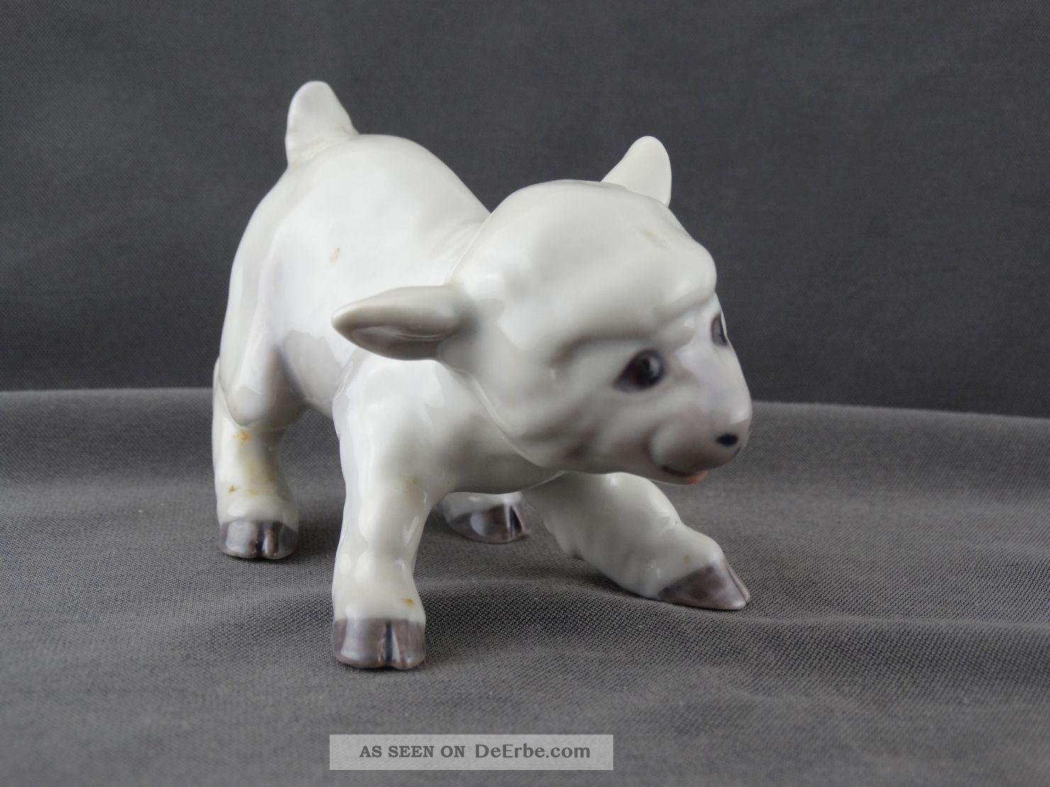 Bing & Groendahl Porzellan Figur Kleines Schaf Lamm Modell 2562 Nach Marke & Herkunft Bild