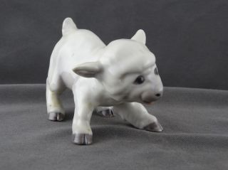 Bing & Groendahl Porzellan Figur Kleines Schaf Lamm Modell 2562 Bild