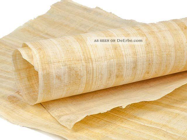 Cyperus Papyrus Blatt 62x42cm Naturbelassene Ränder Entstehungszeit nach 1945 Bild