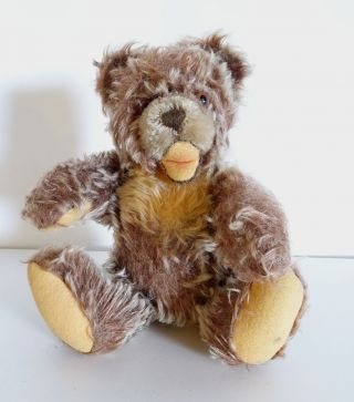 Alter Steiff Teddy Bär